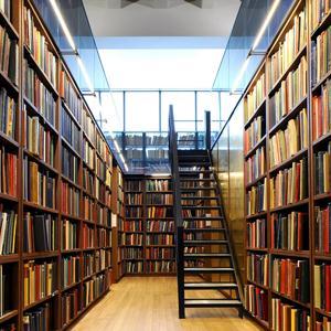 Библиотеки Боровска