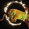 Цирки в Боровске
