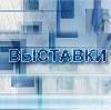 Выставки в Боровске