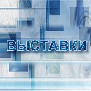 Выставки Боровска